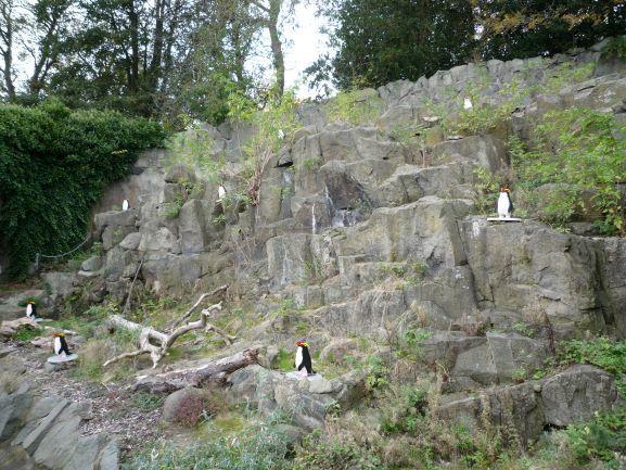 エディンバラ動物園(Edinburgh Zoo)_c0076387_06094029.jpg