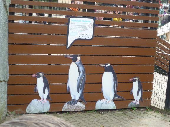 エディンバラ動物園(Edinburgh Zoo)_c0076387_06130935.jpg