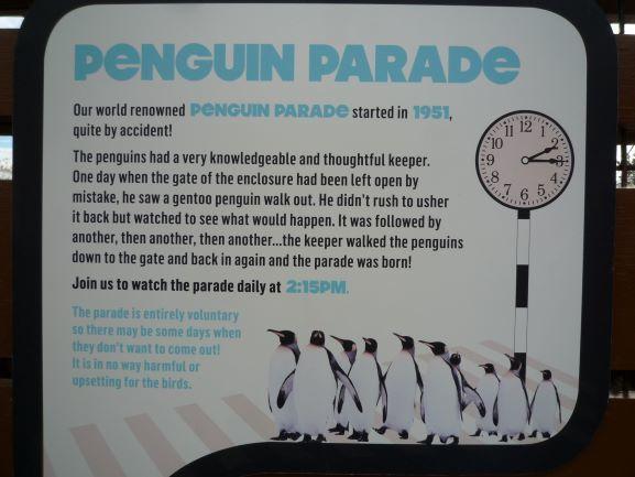 エディンバラ動物園(Edinburgh Zoo)_c0076387_06131764.jpg