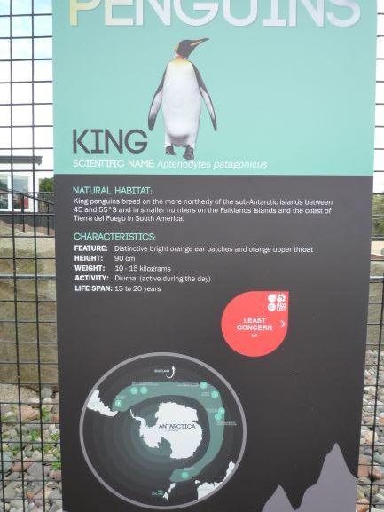 エディンバラ動物園(Edinburgh Zoo)_c0076387_06133611.jpg