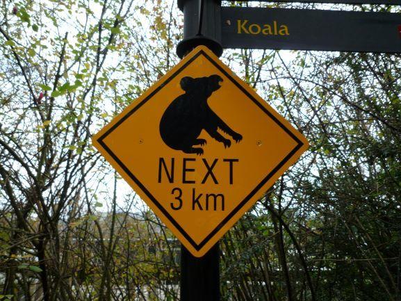 エディンバラ動物園(Edinburgh Zoo)_c0076387_06165132.jpg