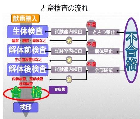 ⑤a 8.検査・選別_b0391989_09303948.jpg