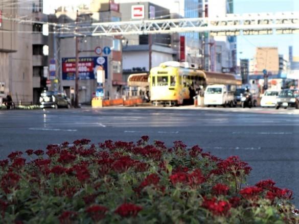 高知の街を走る路面電車、いろんな路面電車にびっくり、可愛い高知の路面電車と観光巡り_d0181492_00223220.jpg