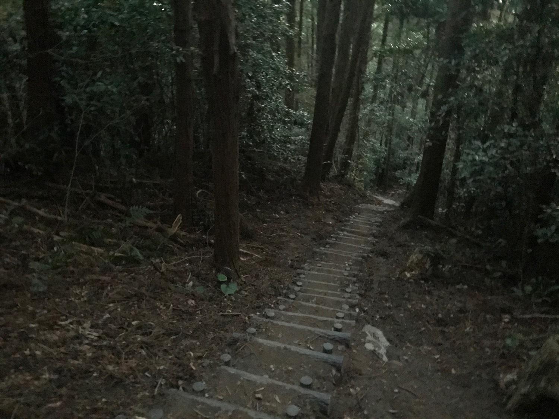 休みがあったら山登りin糸島-可也山(糸島富士)_f0232994_13541679.jpg