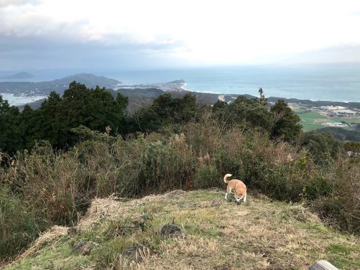 休みがあったら山登りin糸島-可也山(糸島富士)_f0232994_14275834.jpg