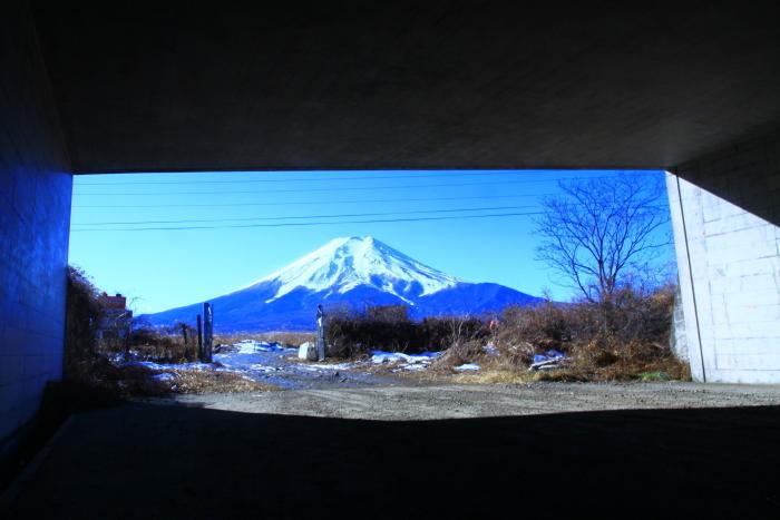 令和2年1月の富士 (9) 北富士演習場の富士_e0344396_16325608.jpg
