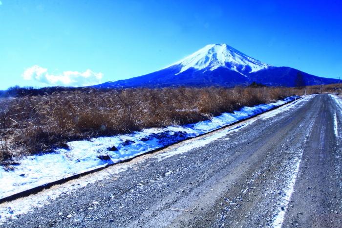 令和2年1月の富士 (9) 北富士演習場の富士_e0344396_16330847.jpg