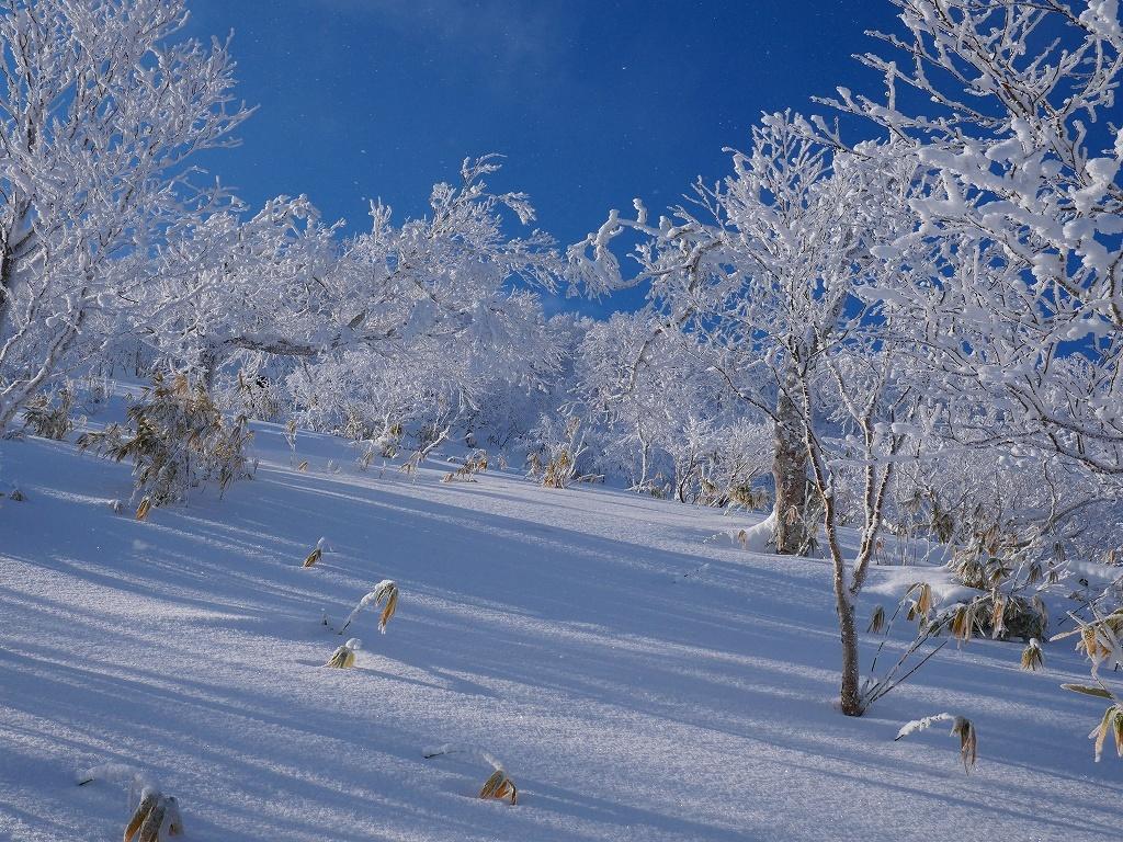北白老岳と白老岳、2020.1.13_f0138096_23210156.jpg