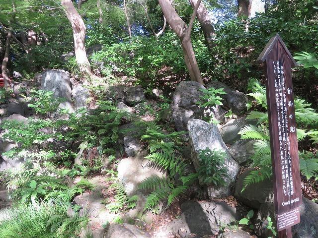 小石川後楽園①(新江戸百景めぐり57-1)_c0187004_15210814.jpg