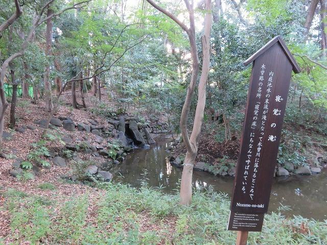 小石川後楽園①(新江戸百景めぐり57-1)_c0187004_15233186.jpg