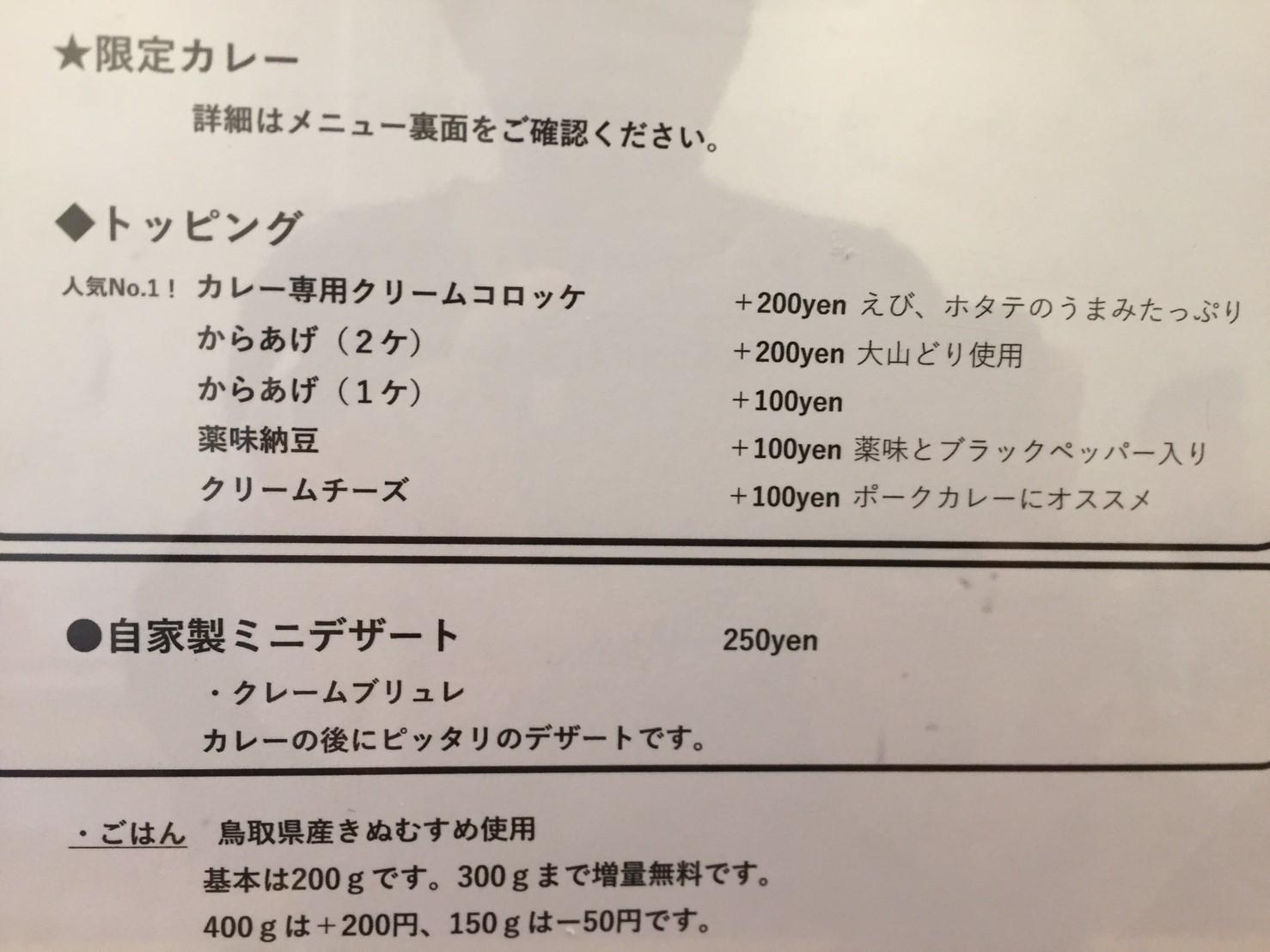 PARAKEET 限定カレー (金沢カレー風 ポークカツカレー)_e0115904_12402976.jpg
