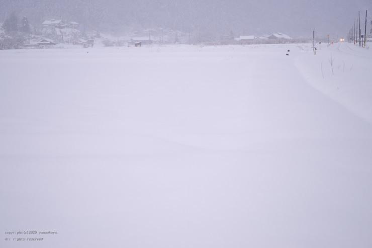 白い季節_d0309612_00082876.jpg