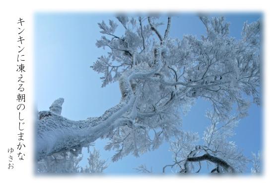 雪景色 その⑪_b0392813_19512377.jpg