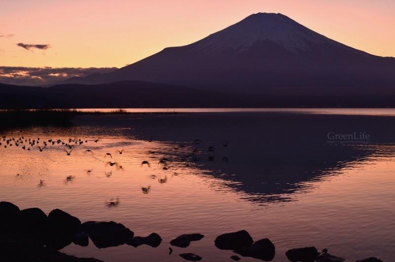 富士を求めて_f0321522_00171637.jpg