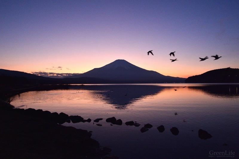 富士を求めて_f0321522_00172980.jpg