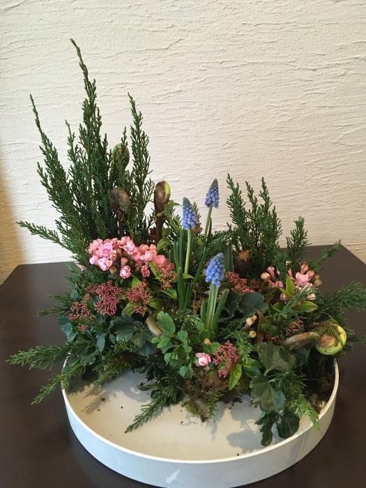 球根付きのムスカリ〜春のお庭のイメージで_f0155431_22340436.jpeg