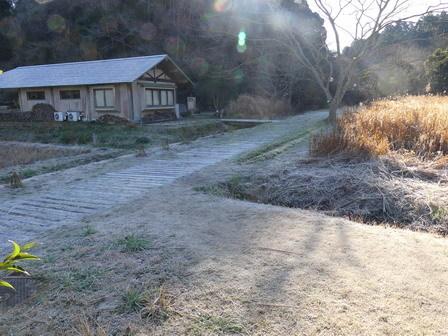 霜が降りました_a0123836_17123935.jpg