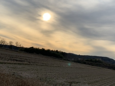 冬の土用  1/18-2/3_c0207638_17573858.jpeg