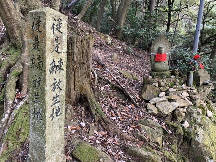 中山寺から奥之院を経由し清荒神へ歩いてみた_e0173645_07164665.jpg