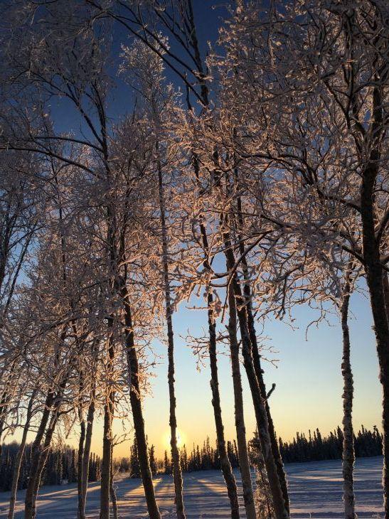 樹氷(カシュウィットナ湖)_b0135948_15560047.jpg