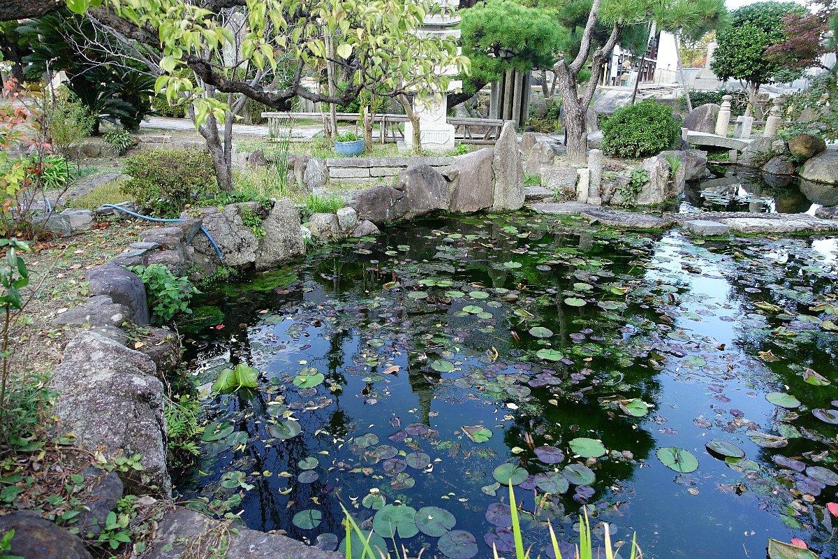 富田御坊 本照寺庭園_c0112559_08140479.jpg