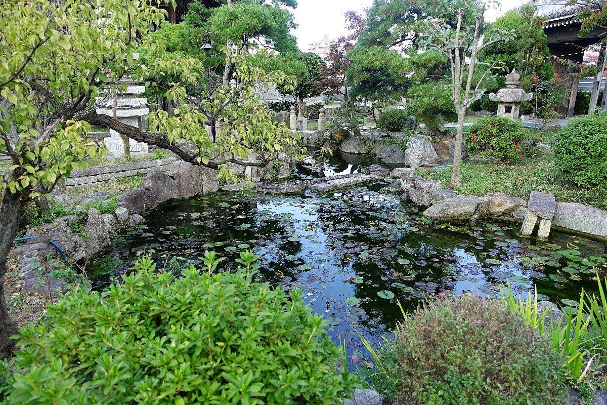 富田御坊 本照寺庭園_c0112559_08152992.jpg