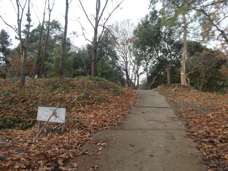 「新春里海まつり」の反省&提案・・・うみべの森を育てる会_c0108460_16494849.jpg
