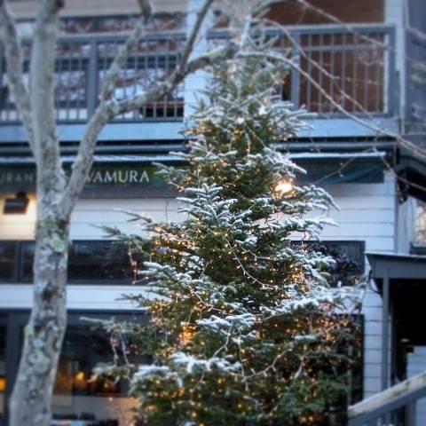 雪景色の旧軽井沢 * ベーカリー&レストラン 沢村~おかしやあした_f0236260_06114307.jpg