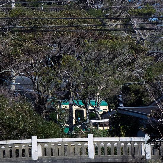 樹間の江の電。_b0022268_19160724.jpg
