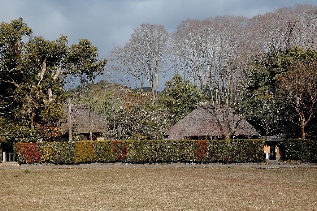 嵐山.嵯峨野4_a0170082_08504666.jpg