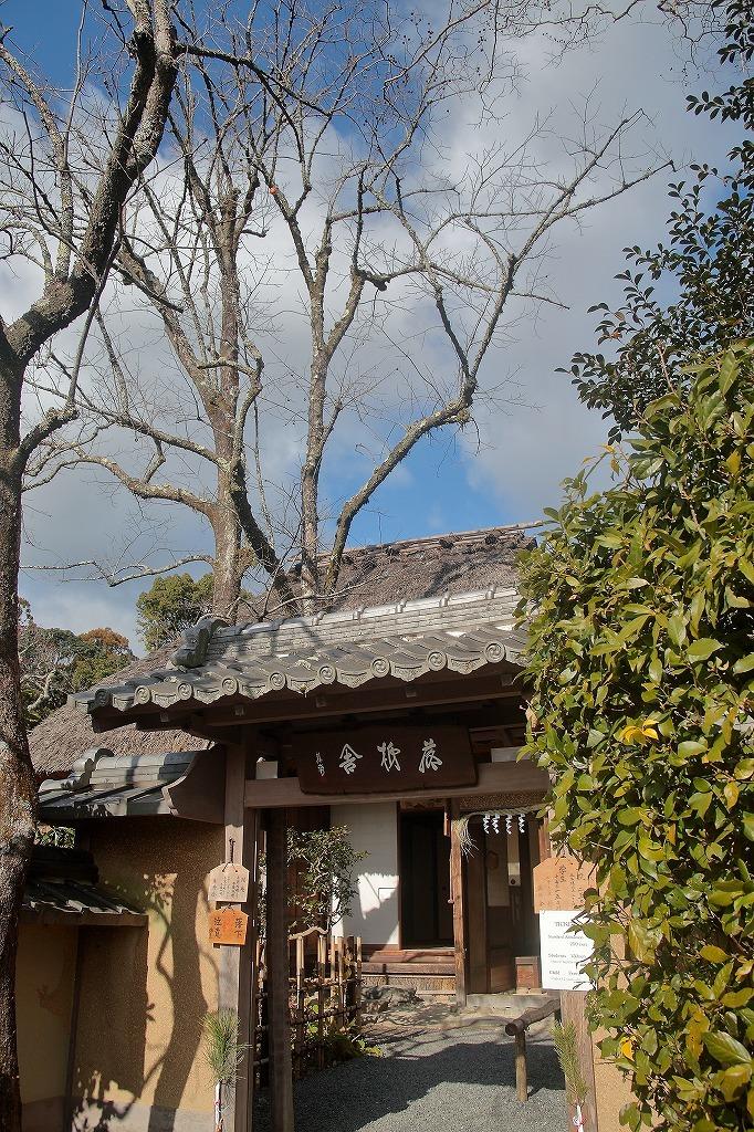 嵐山.嵯峨野4_a0170082_08511552.jpg