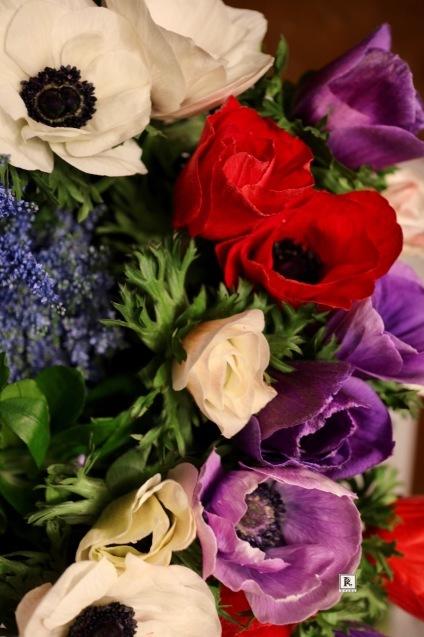 原色もまた春の生命力を感じます!_c0128489_16464821.jpg
