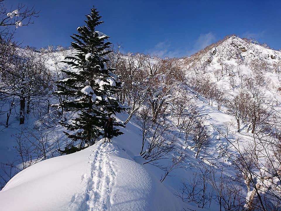 新ライトニングアッセントで信砂岳スノーハイク_d0198793_17003561.jpg