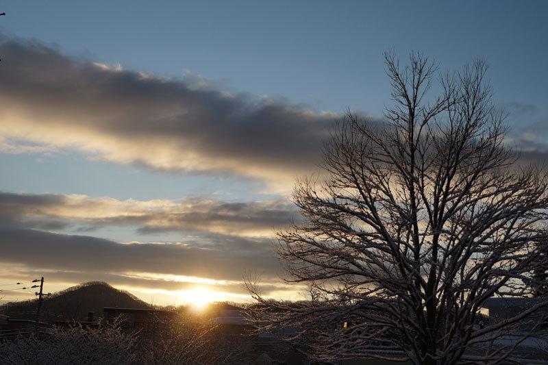 久しぶりの雪の朝_d0162994_09290363.jpg