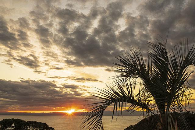 江ノ島からの富士山 稚児ヶ淵・江ノ島展望台・サンセットテラス_b0145398_19004825.jpg