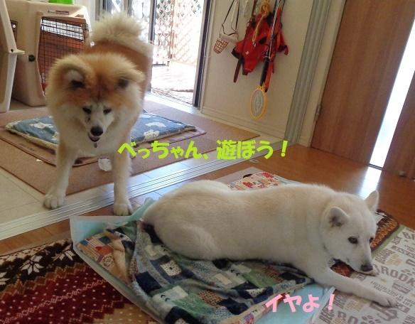 お決まりの儀式(笑)_f0121712_22555679.jpg