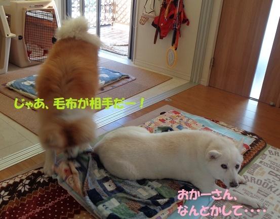 お決まりの儀式(笑)_f0121712_22560092.jpg