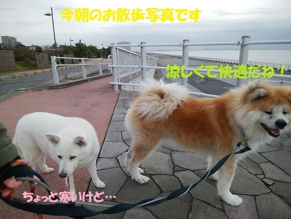 お決まりの儀式(笑)_f0121712_23420432.jpg
