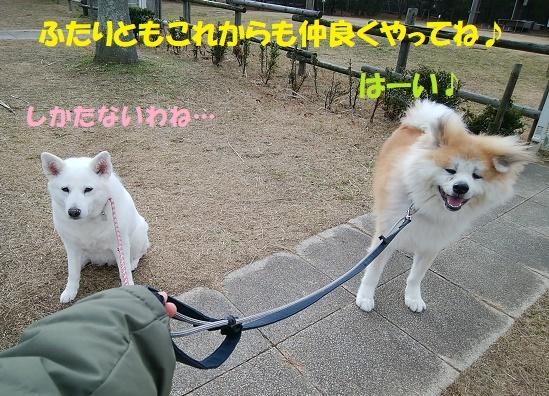 お決まりの儀式(笑)_f0121712_23525489.jpg