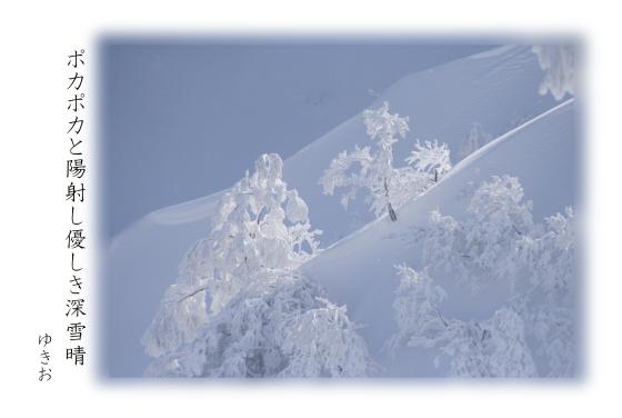 雪景色 その⑫_b0392813_21005019.jpg
