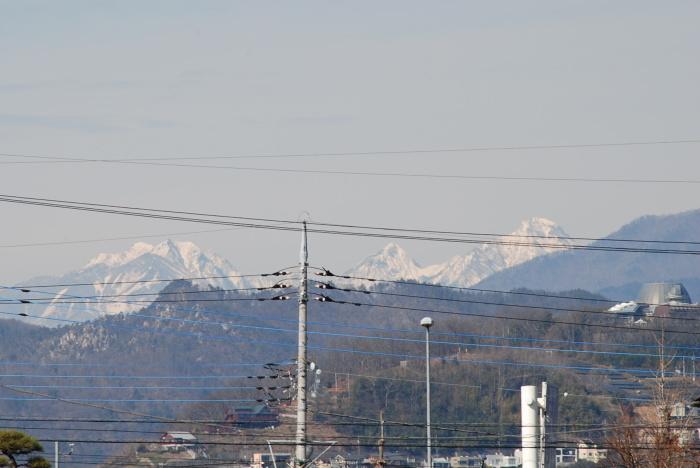 八ヶ岳は久しぶりです。_f0189218_12374198.jpg
