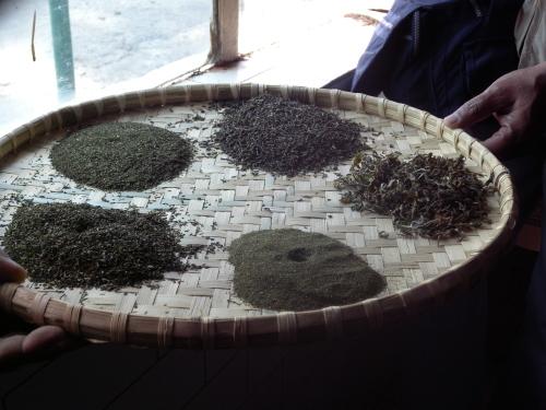 紅茶の等級 基礎知識 _b0158721_15180852.jpg