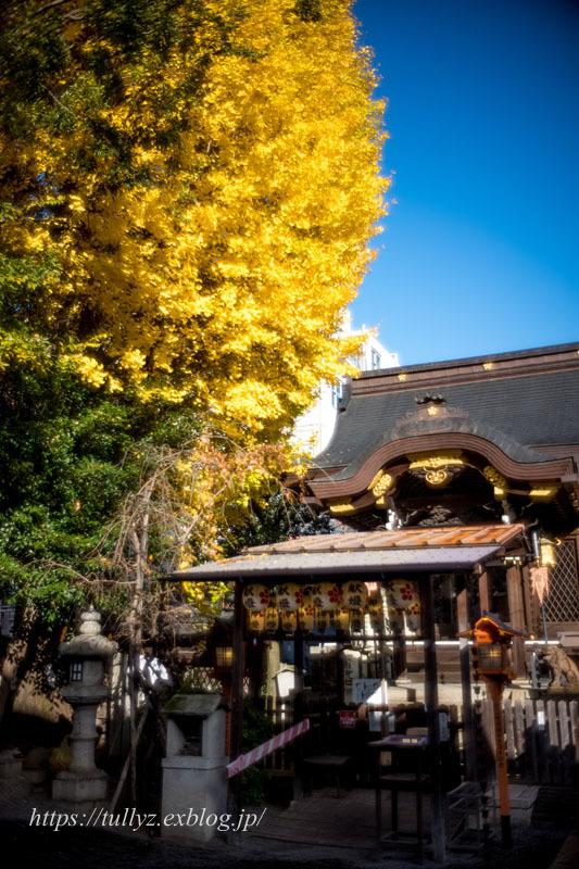 京都の秋2019(39)_d0108132_11245288.jpg
