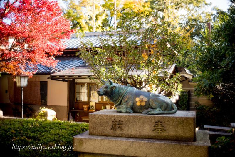 京都の秋2019(40)_d0108132_11282269.jpg