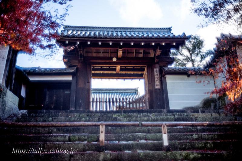 京都の秋2019(43)_d0108132_11573072.jpg