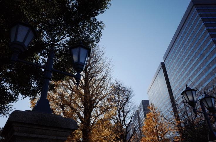 皇居からぶらぶら その2 ~ 日比谷公園_a0287336_15491558.jpg