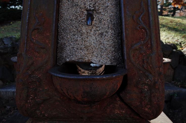 皇居からぶらぶら その2 ~ 日比谷公園_a0287336_15544486.jpg