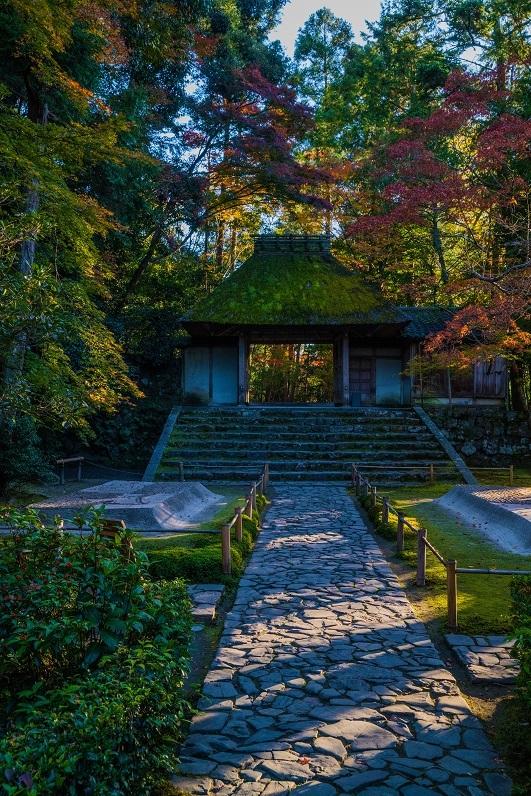 2019京都紅葉~法然院_e0363038_10253545.jpg