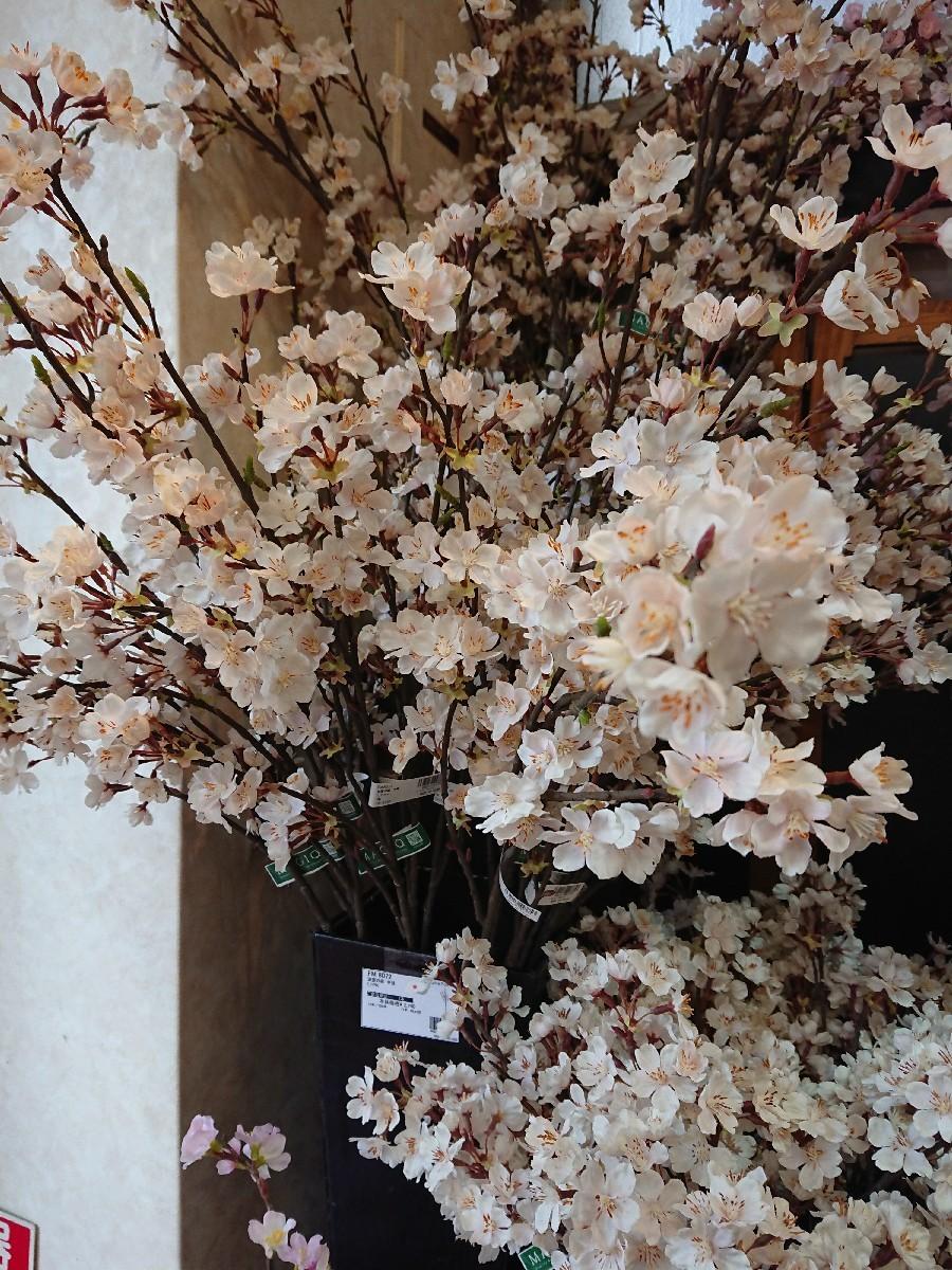 四谷の東京堂へ_f0323446_19545943.jpg