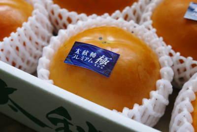 太秋柿 剪定作業2020 今年は今までと全く異なり低く仕上げています(後編)_a0254656_16541139.jpg